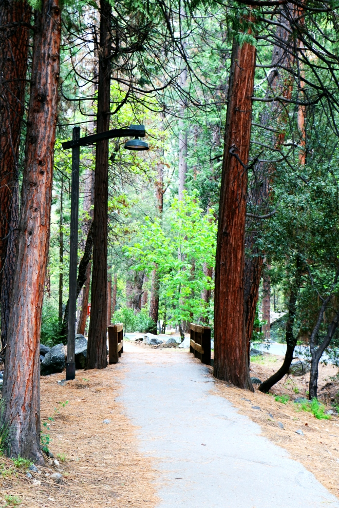 Yosemite Walk