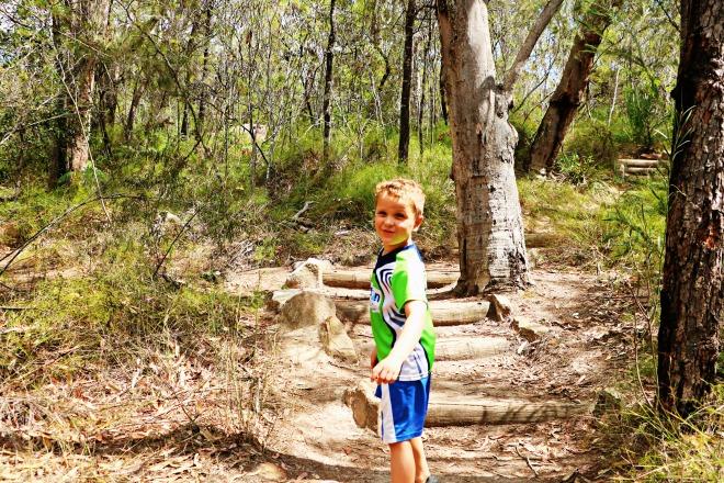 Bushwalks and the Mangrove Swampy