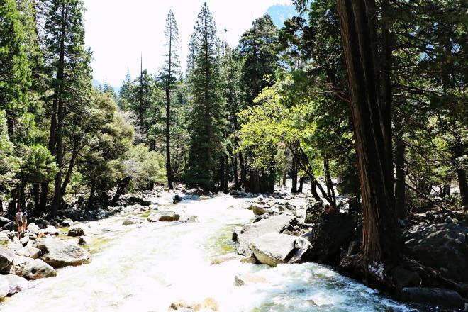 Merced River Near Waterfall