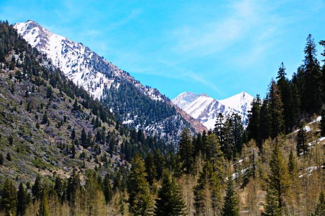 Mineral King Peak